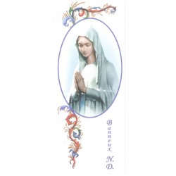 Bookmark 15 x 6 cm our Lady...